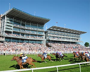 York Races at York Racecourse